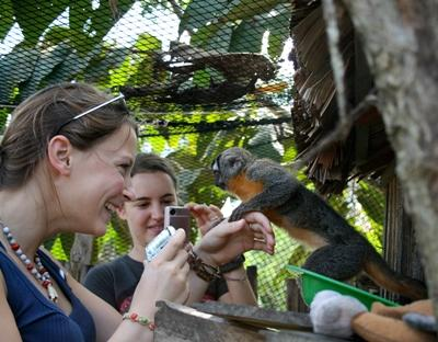 Female volunteers meeting a friendly monkey in the Amazon on a Conservation project in Peru