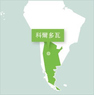 阿根廷的義工項目
