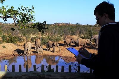 Projects Abroad volunteers identify elephants as part of their volunteer work in Botswana.