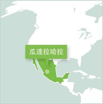 瓜達拉哈拉是城市地圖,Projects Abroad在瓜達拉哈拉設立義工項目。