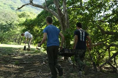 Volunteer with Projects Abroad on an Environmental Conservation project in Latin America & the Caribbean in the forest.