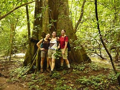 Gap Year volunteers pose in front of a large tree in the forest of Costa Rica on the Conservation project