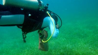 Volunteer diver participates in a dive clean-up on the Conservation Project in Belize.