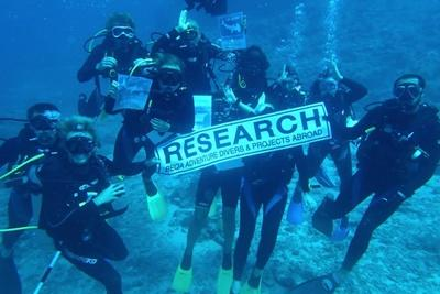 Volunteers on the Shark Conservation Project in Fiji help research efforts in shark conservation