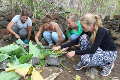 年輕的高中生義工為厄瓜多爾的野生物種提供食物