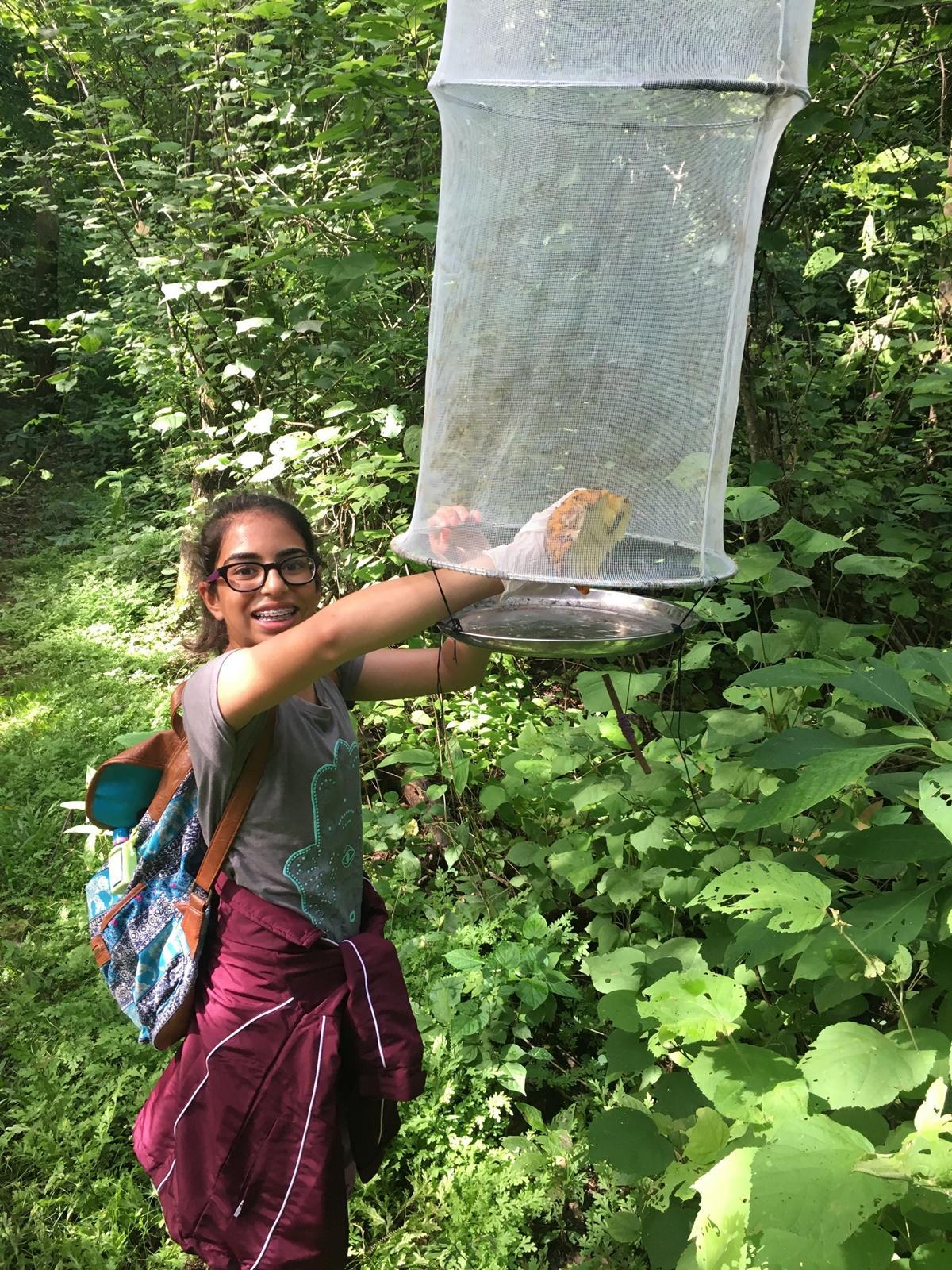 環保義工在哥斯達黎加捕捉和觀察蝴蝶進行記錄