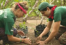 國際志工 環境保護志工營