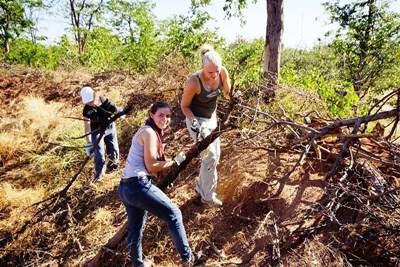 適合高中生參加的南非及博茨瓦納環保義工工作