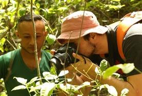 Volunteer Conservation & Environment