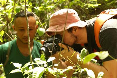 Capture and identify caterpillar species on the Conservation & Community High School Special in Costa Rica
