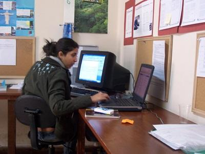 Journalism volunteer does office work while on her internship in Bolivia