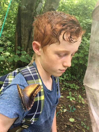 哥斯達黎加的蝴蝶剛好就在初中生義工的肩膀上