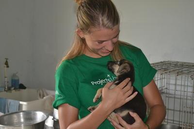 小狗獲得動物關愛項目義工的悉心照顧
