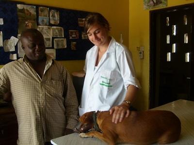 Veterinary interns in Ghana