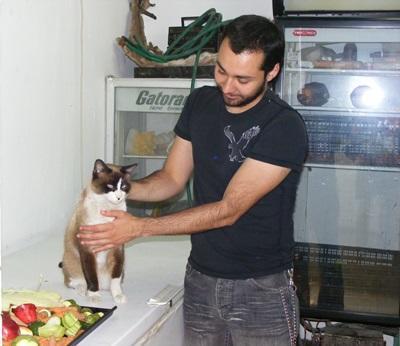 實習生參與墨西哥的獸醫項目協助照顧家貓