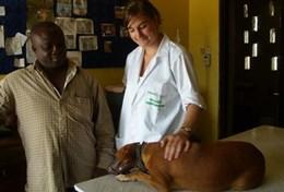 Volunteer Veterinary Medicine & <br />Animal Care