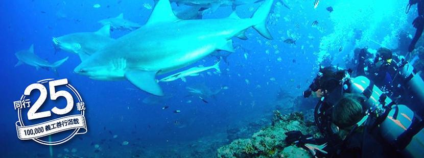 義工參與國際環境保護項目在水底進行生態普查